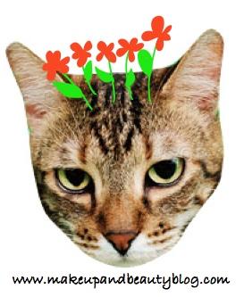 fussy-tabby-flowers