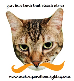 fussy-tabby-orange-stache