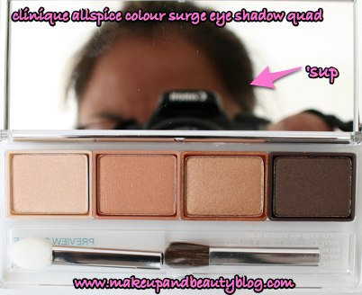 clinique-holiday-2007-allspice-colour-surge-shadow-quad