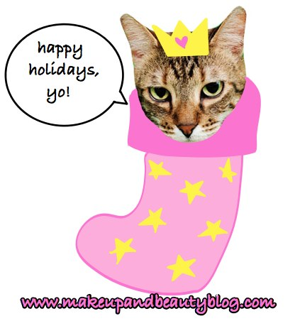 fussy-tabby-stocking-stuffer