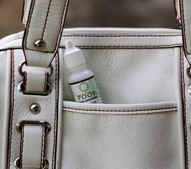 poof-in-purse.jpg