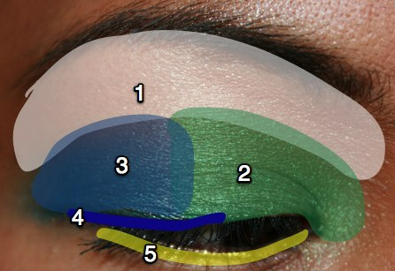 mac-cosmetics-parrot-fotd-sprout-eye-map