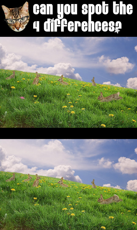 Can you spot the 4 differences between these two pictures?