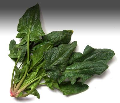 spinach-antiaging