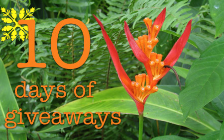 makeup-and-beauty-blog-10-days-of-giveaways-bird-of-paradise