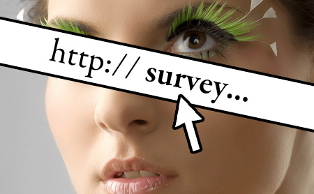 Makeup and Beauty Blog 2009 Marketing Survey