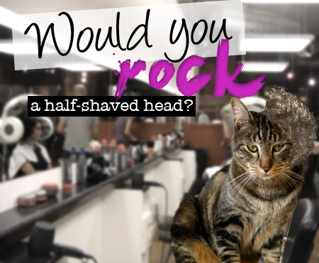 Would you rock a half-shaved head?