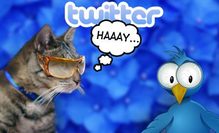 Tabs on Twitter
