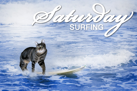 Tabs is Saturday Surfing