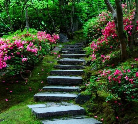 goal-setting-stairway