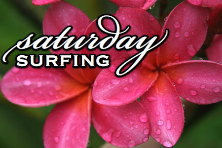 112109-saturday-surfing