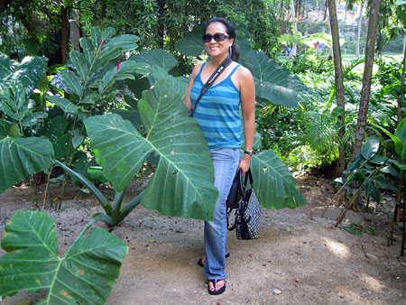 010410-mbb-monday-poll-karen-with-giant-plant