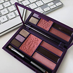 The $14 Urban Decay Face Case