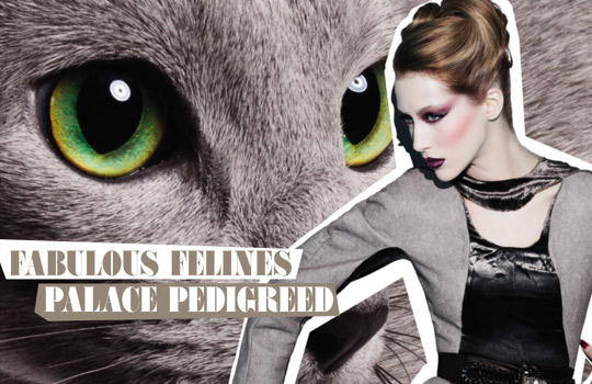 MAC Fabulous Felines Swatches Palace Pedigreed