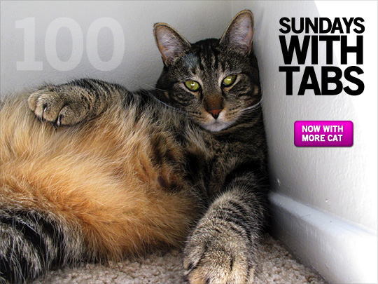 Sundays with Tabs the Cat: Makeup and Beauty Blog Mascot