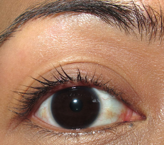 benefit prrrowl review benefit prowl review swatches photos mascara bare lashes