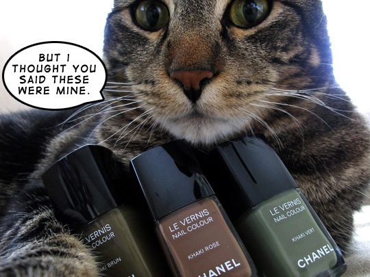 Tabs and his Chanel Khaki nail polishes