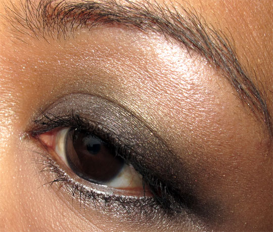 dior holiday 2010 endless shine 529 swatches photos pictures face of the day eye 1