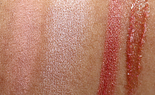dior holiday 2010 endless shine 529 swatches photos pictures face of the day swatches 2