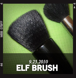 The $3 e.l.f. Studio Powder Brush