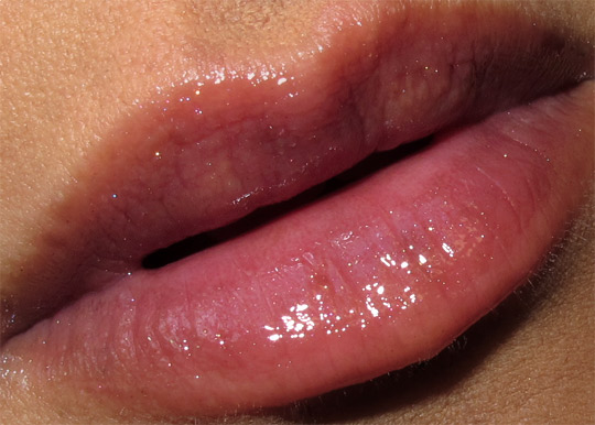 smashbox wish for the perfect pout swatches review ecstasy