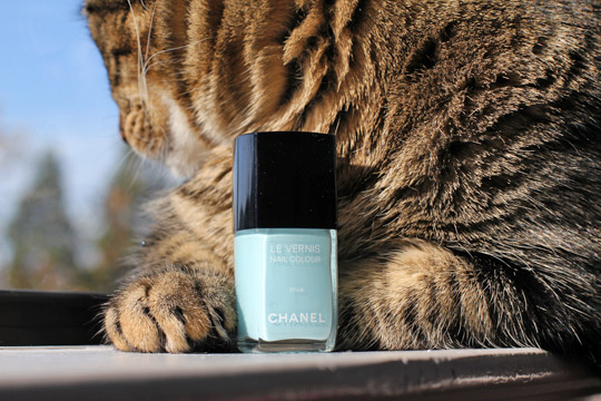 chanel riva le vernis nail colour