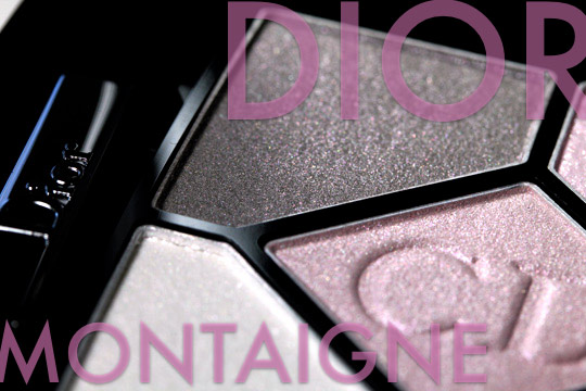 dior montaigne swatches