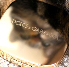 Dolce & Gabbana Secret Garden Swatches