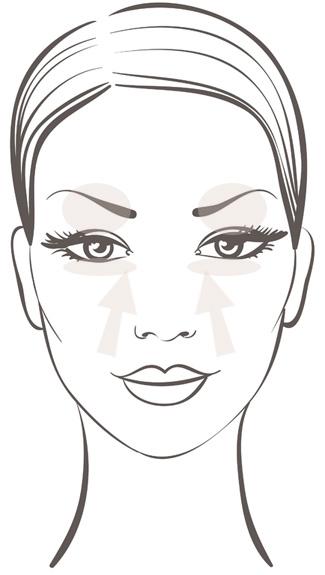 face-model-vector3.jpg