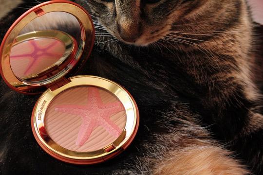 estee lauder bronze goddess sea star bronzing blush