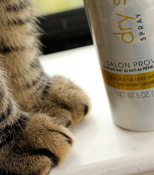 Suave Dry Shampoo