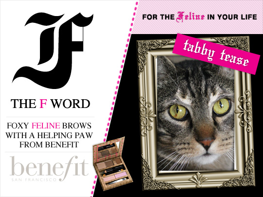 Tabs for the Benefit Feline Brow Kit