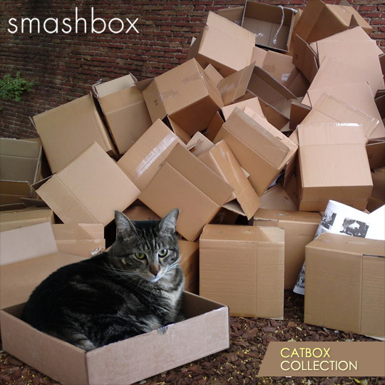 Tabs for the Smashbox Catbox Collection