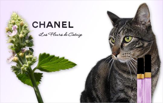 Tabs for Chanel Fleurs de Catnip Glossimer