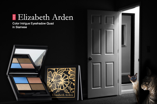 Tabs for the Elizabeth Arden Quad in Siamese