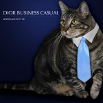 Tabs for the Dior Business Casual Kitty Tie