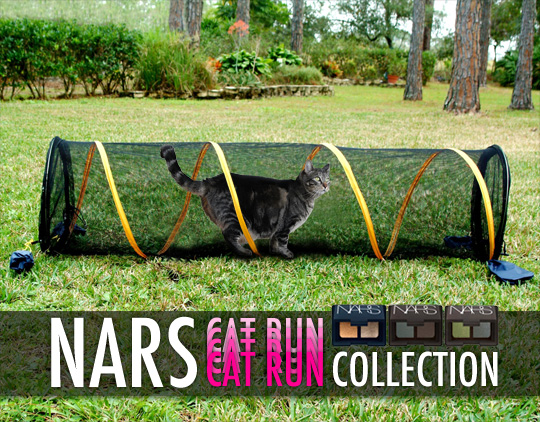 Tabs for the NARS Cat Run Collection