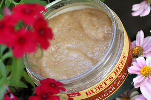 Burts Bees Honey Shea Sugar Scrub