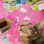tabs-illamasqua-tabby-dreams