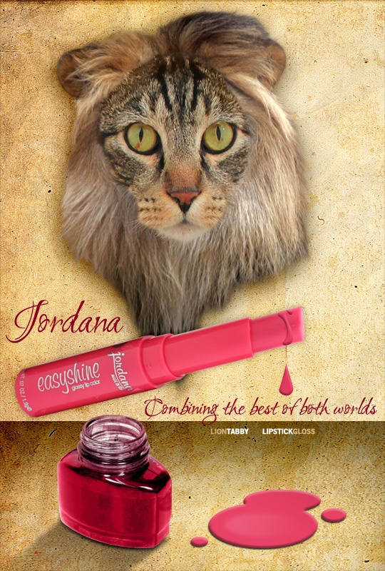 Tabs for Jordana Easyshine Glossy Lip Color
