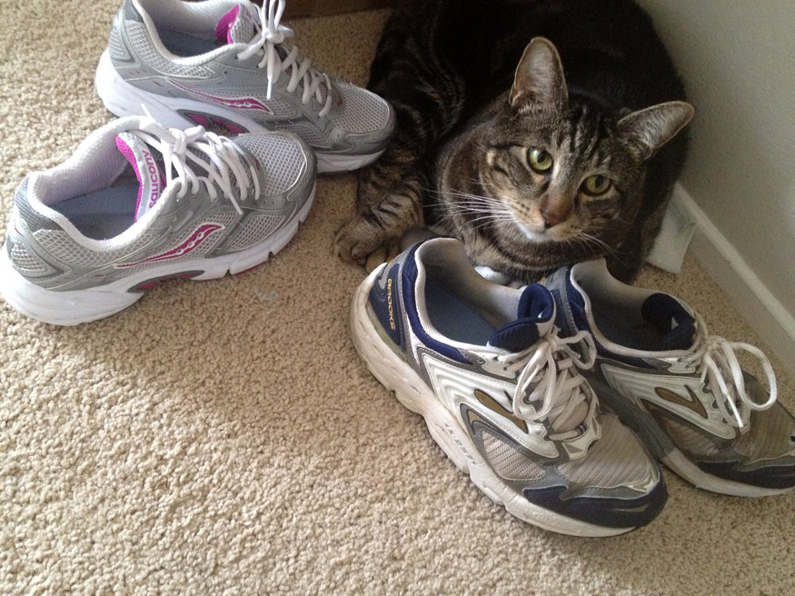 Smelly Running Shoes Treatment