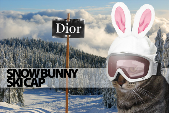 Tabs for the Dior Snow Bunny Ski Cap