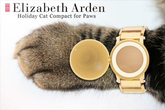 Tabs for the Elizabeth Arden Cat Paw Compact