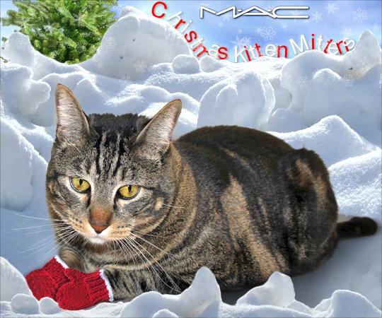 Tabs for MAC Christmas Kitten Mittens