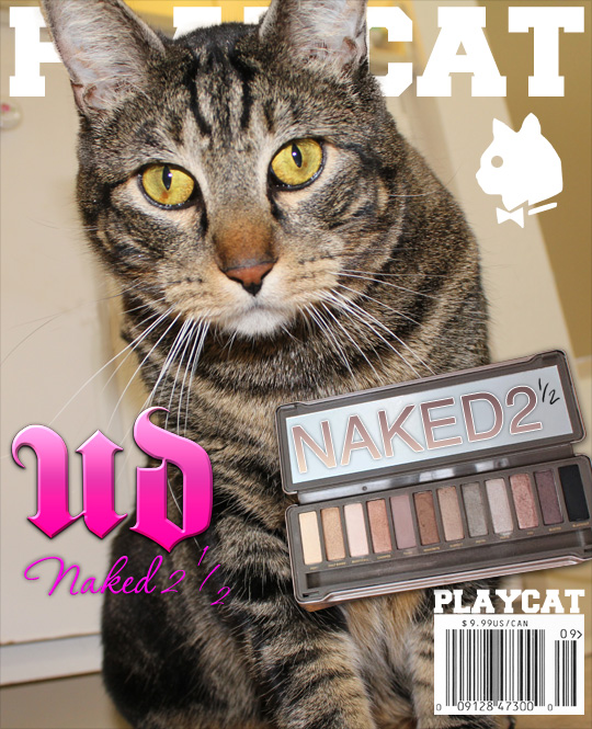 Tabs for the Urban Decay Naked 2.5 Palette