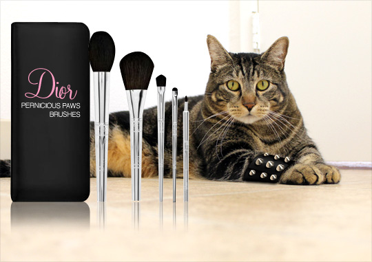 Tabs for the Dior Pernicious Paws Makeup Brushes