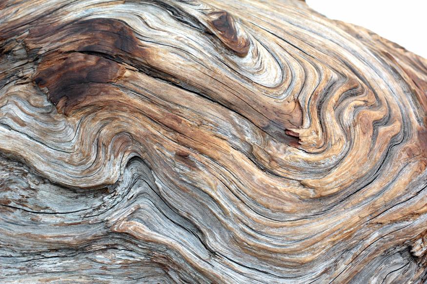 Driftwood Makeup And Beauty Blog