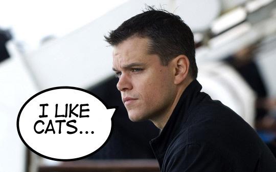 JB likes cats