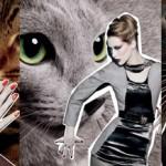 mac-fabulous-felines