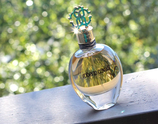 roberto cavalli parfüm yorumlar